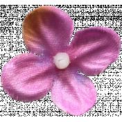 Flowers No.7  - Flower 15