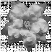 Flowers No.8 Templates- Flower Template 1