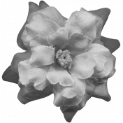 Flowers No.8 Templates- Flower Template 1