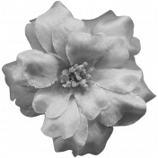 Flowers No.8 Templates- Flower Template 2