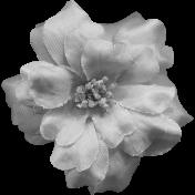 Flowers No.8 Templates- Flower Template 2