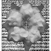 Flowers No.8 Templates- Flower Template 4