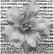 Flowers No.8 Templates- Flower Template 5