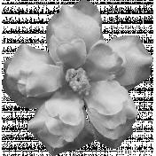 Flowers No.8 Templates- Flower Template 6