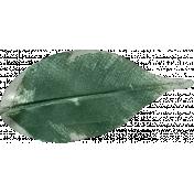 Ramadan - Leaf