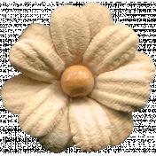 Flowers No.11 - Flower 7