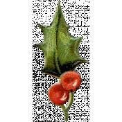 Holly - Holly 5