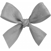 Ribbons No.11- Ribbon Template 5