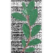 Nature Escape- Branch