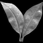 Leaves No.4 – Leaf Template 7