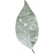 Leaves No.4 – Leaf 2