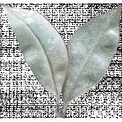Leaves No.4 – Leaf 7