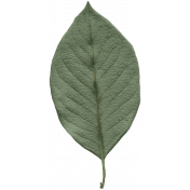 New Day Elements- Leaf