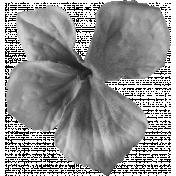 Flowers No.22 Flower 2- Template