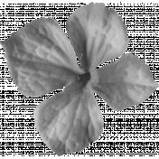 Flowers No.22 Flower 3- Template