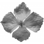 Flowers No.22 Flower 4- Template