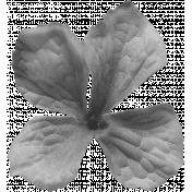 Flowers No.22 Flower 7- Template