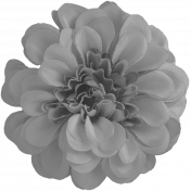 Flowers No.23 Flower 1- Template