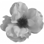 Flowers No.23 Flower 2- Template