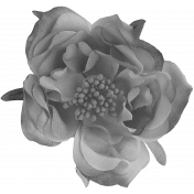 Flowers No.23 Flower 3- Template