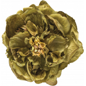 Flowers No.24-01