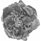 Flowers No.24-01 Template