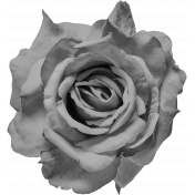 Flowers No.24-03 Template