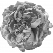 Flowers No.24-02 Template