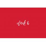 Back To Basics Week Pocket Cards 01-012