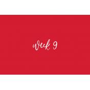 Back To Basics Week Pocket Cards 01-018