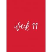 Back To Basics Week Pocket Cards 01-021