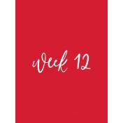 Back To Basics Week Pocket Cards 01-023
