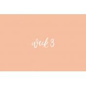 Week Card 10-006