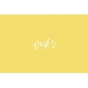 Back to Basics Week Pocket Card 06-010