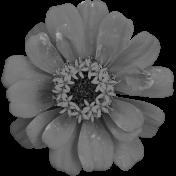 Flower No. 25-01 Template
