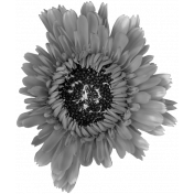 Flowers No.28-03 template
