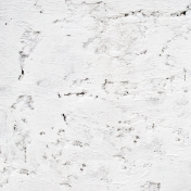 White Wall Textures-06