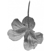Flowers No.29-08 template
