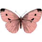 Our House Garden,Elements- Pink Butterfly