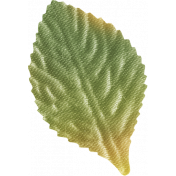 One Of A Kind- Leaf