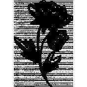 Flower Sketches No.1- Brush 4