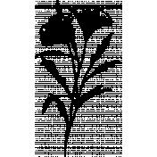 Flower Sketches No.2- brush 01