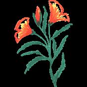 Flower Sketches No.2- Sketch 02