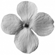 Flowers No. 03 Templates- Flower Template 04