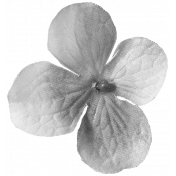 Flowers No. 03 Templates- Flower Template 06