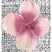 Flowers No. 03- Flower 05