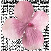 Flowers No. 03- Flower 06