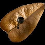 Design Pieces- Leaf 6