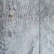 Textures No.5: Wood Texture 06