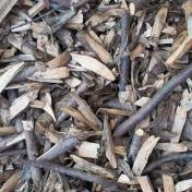 Textures No.5: Wood Texture 08